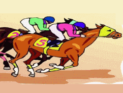 Race night cropped